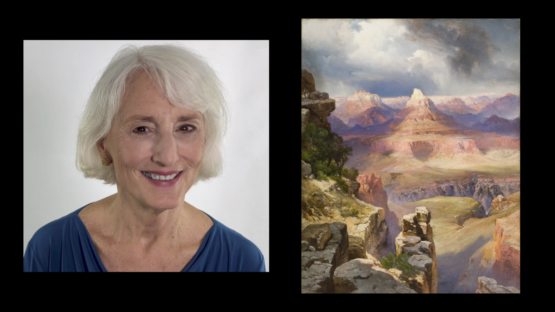 "AMAM Webinar: ""Caring for the Art of the Capitol"""